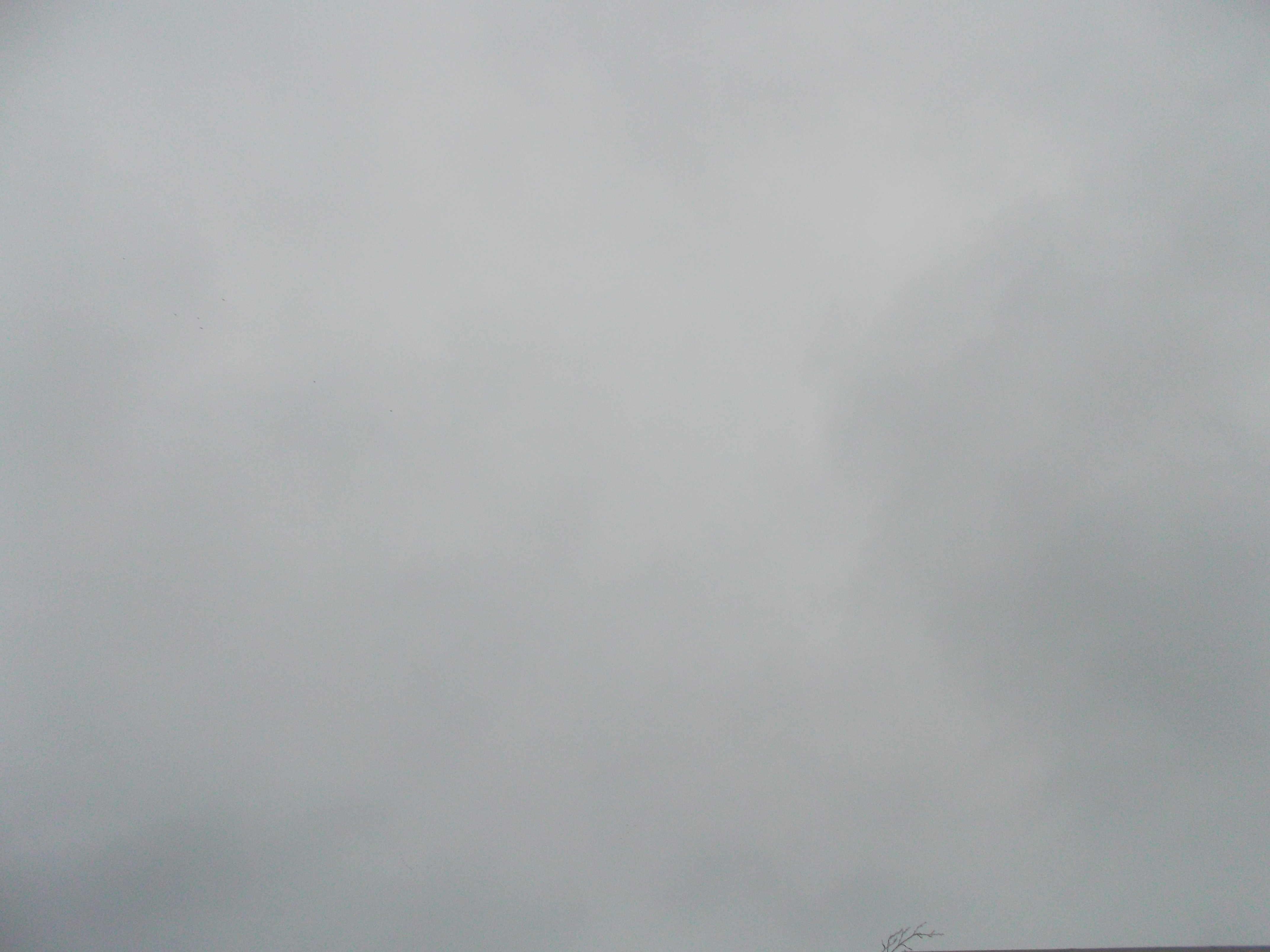 2013-03-11 Longitude -0.360578 Latitude 49.168919 Altitude 29 Heure 13h43